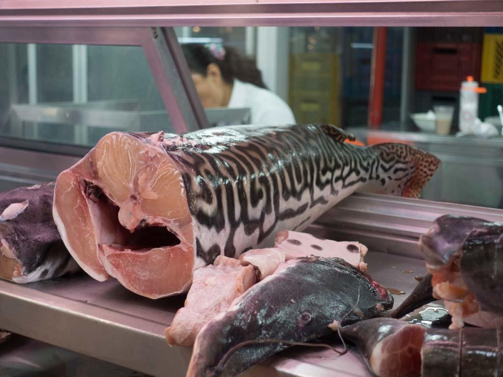 Catfish La Minorista